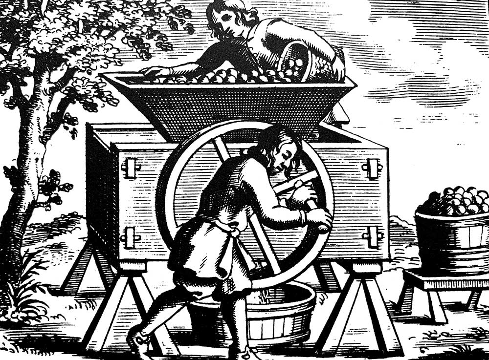 The History of Cider